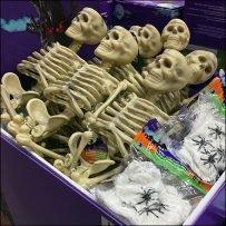 skeletons-sold-by-bulk-bin-full-feature